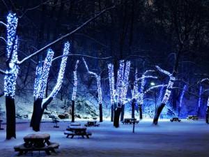 Декоративное освещение улиц и парков